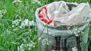image of a full bin