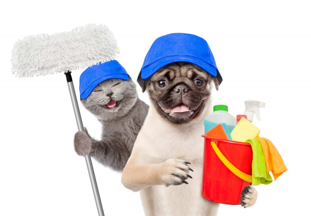 Top 7 Heaven-Sent Pet-Friendly Cleaning Products Safe For Use With Animals