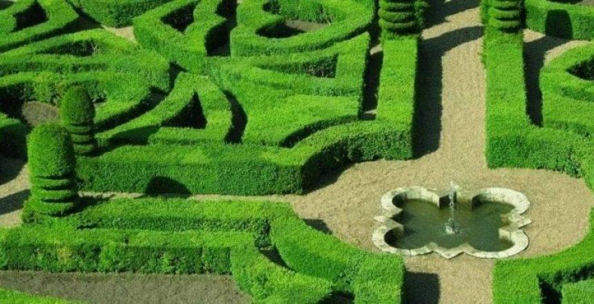 big commercial garden hedges ideas, Commercial Garden Maintenance