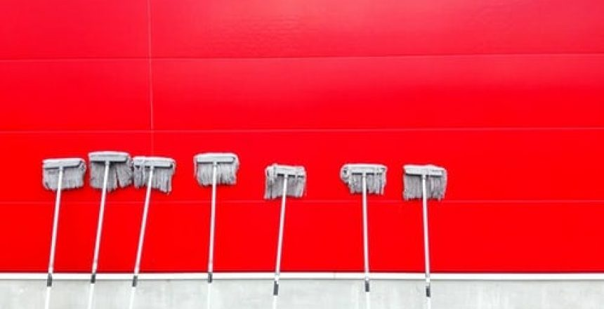 Mops Red Wall